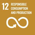 SDG goal 12 economy