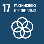 SDG goal  partnerships